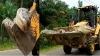 500 கிலோ எடை;14 அடி நீளம் கொண்ட ராட்சஸ முதலை! மீண்டும் தாக்கும் என்று நம்பி மக்கள் செய்த காரியம்!