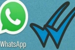 உண்மையா? பொய்யா?., Whatsapp அறிமுகம் செய்த அட்டகாச அம்சம்: சரியான நேரம் இதுதான்!