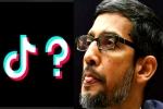 TikTok க்கு மறைமுகமாக உதவிய Google! பல மில்லியன் மதிப்புரைகள் அகற்றம் ஏன் தெரியுமா?