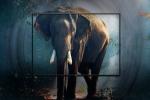 பட்ஜெட் விலையில் புதிய 32-இன்ச், 43-இன்ச் ரெட்மி ஸ்மார்ட் டிவிகள் அறிமுகம்.! தரமான அம்சங்கள்.!