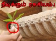 1000 ஆண்டு ரகசியம் : வாய்பிளக்க வைக்கும் தமிழர் தொழில்நுட்பம்.!!