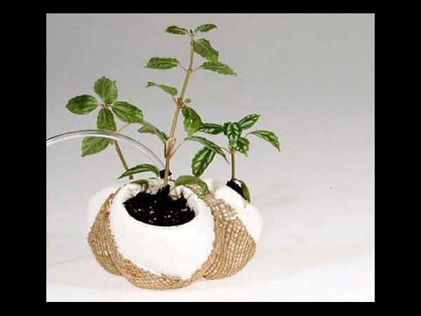 Ponic-Home Hydroponic Planter