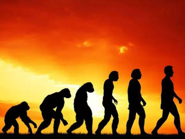 மனிதன் குரங்கிலிருந்து பிறக்கவில்லை: அவிழ்ந்தது பூமியின் மர்ம முடிச்சு