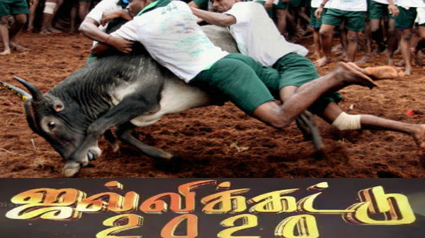 Madurai jallikattu: அட்டகாச அறிவிப்பு: மொபைலில் லைவ் ஆக உலக புகழ் மதுரை ஜல்லிக்கட்டு- எப்படி ?