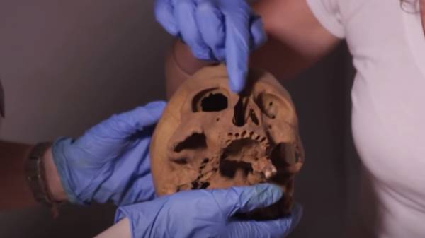 3000 ஆண்டுகள் பழமையான எகிப்திய மம்மி