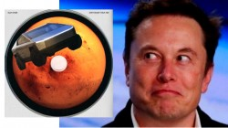 Elon Musk உருவாக்கிய புதிய பேங்கர் EDM டிராக்! லிஸ்டில் இது புதுசா இருக்கே!