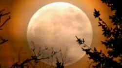 Super Flower Moon 2020: இந்த ஆண்டின் இறுதி சூப்பர் மூன் நிகழ்வைக் காண லாஸ்ட் சான்ஸ்!