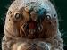 தனியாக இருக்கிறேன் என்ற கவலை வேண்டாம்-டெமோடெக்ஸ் சிற்றுண்ணி உங்களுடன் உள்ளது.!